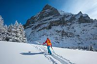 Ski touring beneath the Wetterhorn, Grindelwald, Switzerland