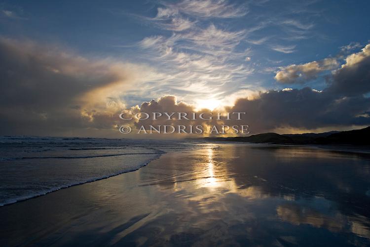 Kahurangi coastline. Tasman Region New Zealand.