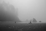 Fog along Ruby Beach