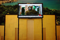 Tripoli, Libya, March 30, 2011..Libyan tv channels show propaganda programs around the clock since the crisis started on February 17th. It is not a great change from the 'normal' programs of the 42 year autocratic Khaddafi regime....