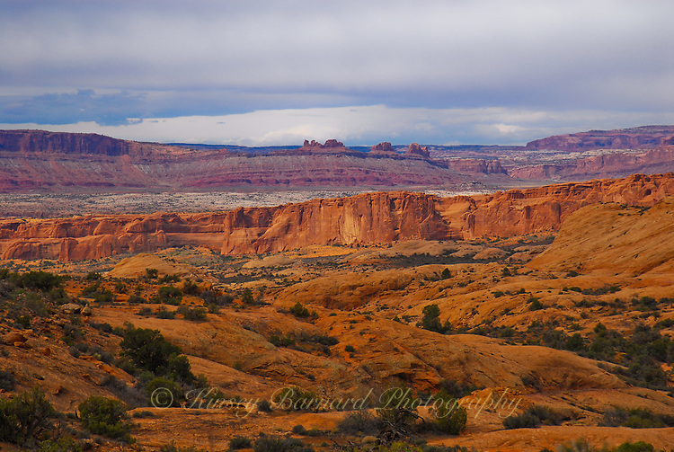 &quot;PAINTED DESERT&quot;<br />