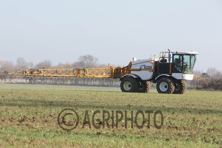 Spraying Winter Wheat after Sugar Beet for bulb Wheat Fly <br /> Picture Tim Scrivener 07850 303986