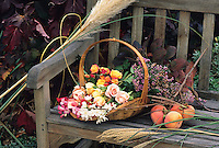Basket of autumn flowering cut flowers on a garden bench