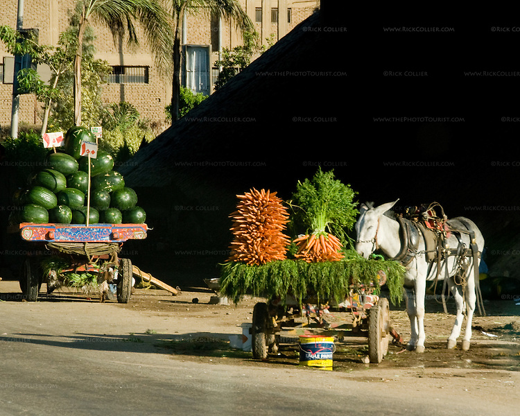 Cairo, Egypt -- A fresh produce stand is set up under an overpass on the main highway from Giza to Cairo. © Rick Collier / RickCollier.com