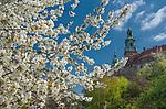 Kr&oacute;lewska Bazylika Archikatedralna św. św. Stanisława i Wacława na Wawelu w Krakowie, Polska<br /> Royal Archcathedral Basilica of Saints Stanislaus and Wenceslaus on the Wawel Hill in Cracow, Poland
