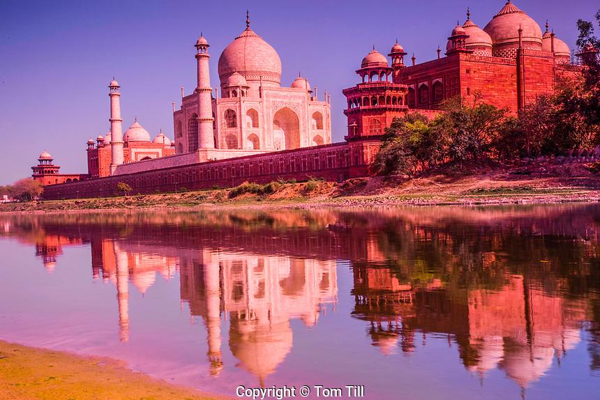 Taj Mahal seen from the Yamuna River, Agra, India, Taj Mahal, UNESCO World Heritage Site, built in 1631 by Shal Jahan for wife Mumtaz Mahal