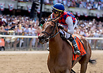 June 8, 2019 : #7, Guarana, ridden by jockey Jose Ortiz, wins the Acorn Stakes on Belmont Stakes Festival Saturday at Belmont Park in Elmont, New York. Scott Serio/Eclipse Sportswire/CSM