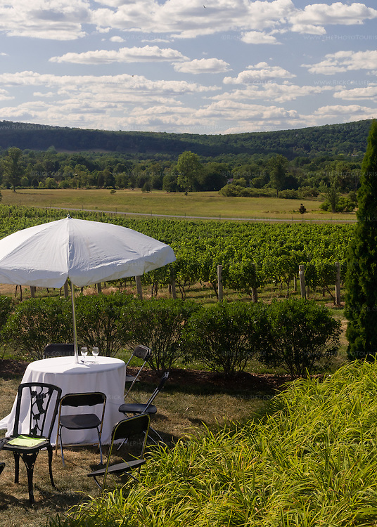 An umbrella-covered table is set for visitors, at the edge of the vineyards at Breaux Vineyards' annual Key West Fest.