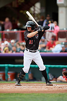 Erie SeaWolves second baseman Will Maddox (31) at bat during a game against the New Hampshire Fisher Cats on June 20, 2018 at UPMC Park in Erie, Pennsylvania.  New Hampshire defeated Erie 10-9.  (Mike Janes/Four Seam Images)