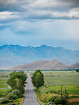 Country road, stormy summer morning, rain and clouds, Thousand Springs Valley, Idaho.<br /> <br /> Salmon River Mountains