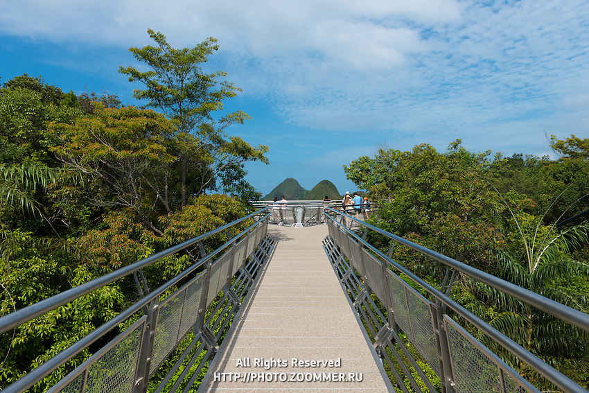 Suspension bridge walkway on the top of Mount Mat Cincang. Langkawi, Kedah, Malaysia, South-East Asia, Asia