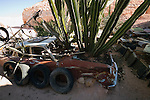 Cactii grows out of a wrecked car in the quirky desert garden of Crocodile Harry - a Latvian born opal miner and Coober Pedy eccentric.  Coober Pedy, South Australia, AUSTRALIA.