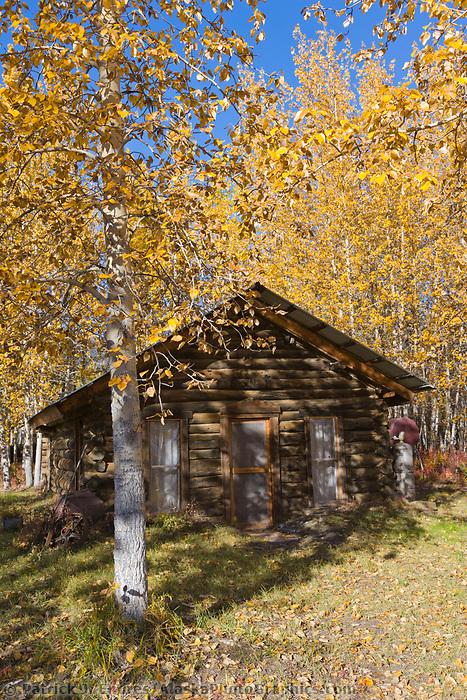 Log cabin in historic community of Wiseman, Alaska.