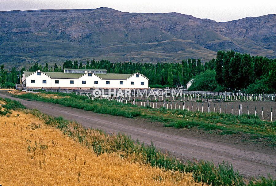 Fazenda La Anita na Patagônia, Santa Cruz. Argentina. 1991. Foto de Luciana Whitaker.