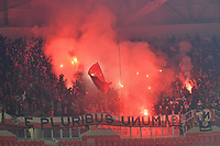 Supporters (benfica)<br /> Lione 5-11-2019 <br /> Olympique Lyon - Benfica <br /> Champions League 2019/2020<br /> Foto Frederic Chambert / Panoramic / Insidefoto <br /> Italy Only