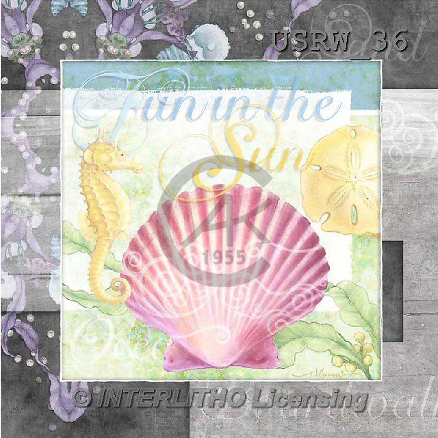 Randy, STILL LIFE STILLLEBEN, NATURALEZA MORTA, paintings+++++CF-Fun_In_The_Sun,USRW36,#i# maritime,sea shells