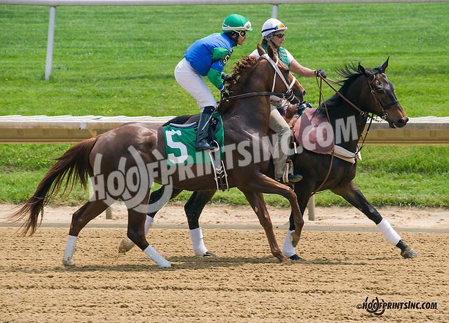 Valiant King at Delaware Park on 5/16/15