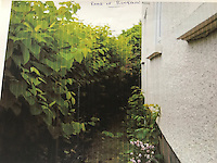 COPY BY TOM BEDFORD<br /> Pictured: The Japanese knotweed behind one of the properties.<br /> Re: A homeowner whose bungalow is towered over by Japanese knotweed on a railway line has won a four-year legal fight for compensation by Network Rail.<br /> Robin Waistell claimed he was unable to sell because the rail body had ignored requests to tackle the invasive weed on the bank behind his home in Maesteg.<br /> The case was seen as a likely test for homeowners whose property is blighted by knotweed on railway embankments.<br /> Network Rail said it would be &quot;reviewing the judgement in detail&quot;.<br /> It is understood the rail infrastructure body was refused immediate leave to appeal against the ruling.<br /> Network Rail faces potential legal costs running into six figures after losing the case in Cardiff bought by Mr Waistell and a neighbour.<br /> Widower Mr Waistell, 70, had moved to the bungalow from Spain after his wife died.<br /> He had hoped to return to the sun, but found his property sale stymied by the knotweed growing on adjacent Network Rail land and was asking for &pound;60,000 compensation for loss of value.