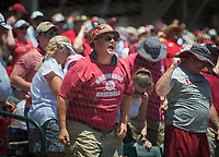 NWA Democrat-Gazette/CHARLIE KAIJO An Arkansas fan yells during the second game of the NCAA super regional baseball, Sunday, June 10, 2018 at Baum Stadium in Fayetteville. Arkansas fell to South Carolina 5-8.