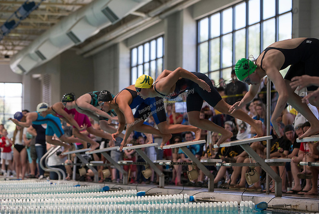 The start of the girls 4A 200 yard IM race during the State Swimming Meet in Carson City on Saturday, May 20, 2017.