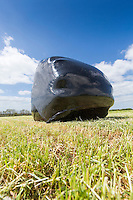 Wrapped grass silage - Lincolnshire Wolds, May
