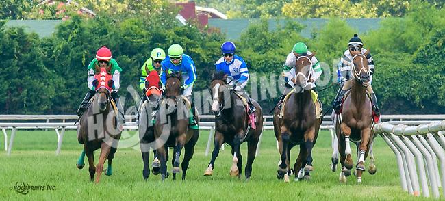 Svindahl winning at Delaware Park on 7/19/17