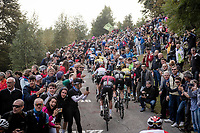 up the infamous (and crowded) Muro di Sormano (avg 17%/max 25%)<br /> <br /> 113th Il Lombardia 2019 (1.UWT)<br /> 1 day race from Bergamo to Como (ITA/243km)<br /> <br /> ©kramon