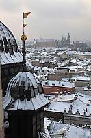 Europe/Voïvodie de Petite-Pologne/Cracovie:Le Château de Wawel et la Cathédrale vus depuis le clocher de l'église Notre Dame  - Vieille ville (Stare Miasto) classée Patrimoine Mondial de l'UNESCO,c