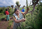 Hilda Coronad trains agricultural promoters at an eco-agricultural training center in Comitancillo, Guatemala. The center is sponsored by the Maya Mam Association for Investigation and Development (AMMID).