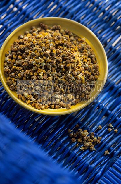 Europe/Espagne/Baléares/Minorque ; Camomille de Mahon peut etre utilisée en tisane ou pour préparer des liqueurs