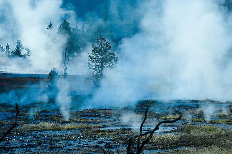 &quot;FIREHOLE DRIVE&quot;<br />