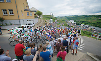 peloton up a category 1 climb in Wormeldange-Haut<br /> <br /> 2013 Skoda Tour de Luxembourg<br /> stage 1: Luxembourg - Hautcharage (184km)