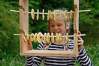 Kinder basteln sich einen Apfeltrockner, Mädchen mit fertigem Apfeltrockner, in dem geschälte und in Scheiben geschnittene Apfelscheiben aufgehängt sind, Apfel, Äpfel, Äpfel trocknen, Trockenobst, Apfelringe, apple, apples