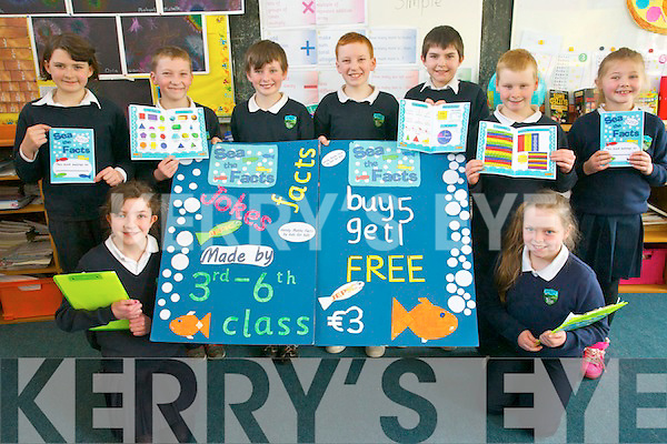 'Sea the Facts' a maths guide for primary school children is the new business set up by pupils at Shrone National School under the Junior Entrepreneur Programme (JEP). <br /> L-R Sophie Nagle, Niamh McSherry, Kieran Fitzgerald, Michael Twomey,Donnagh Fitzgerald, Liam McSherry, Niall Lenihan, Orla Cremin and Michelle Cronin.