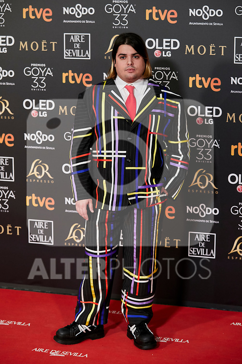 Brays Efe attends to 33rd Goya Awards at Fibes - Conference and Exhibition  in Seville, Spain. February 02, 2019. (ALTERPHOTOS/A. Perez Meca)