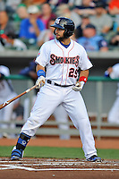 Tennessee Smokies catcher Rafael Lopez #29 awaits a pitch during a game against Huntsville Stars at Smokies Park on April 25, 2014 in Kodak, Tennessee. The Stars defeated the Smokies 15-1. (Tony Farlow/Four Seam Images)