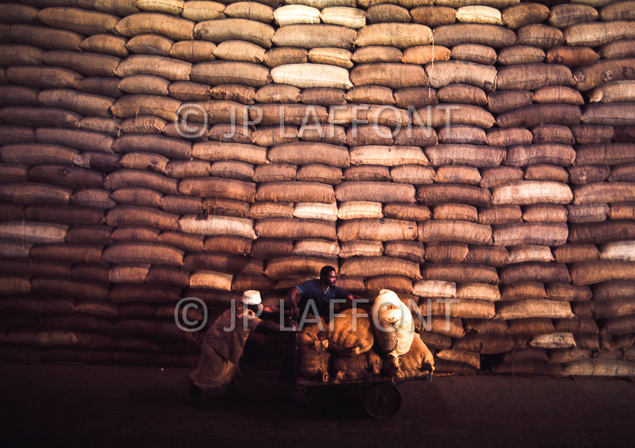 "June 1975, Mozambique --- Cashew Nut Factory of ""Cajuca"" --- Image by © JP Laffont"