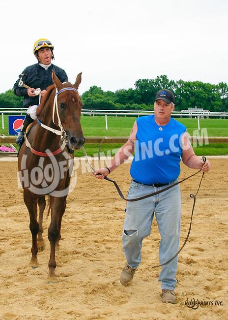 Nikos Red Star winning at Delaware Park on 6/15/16