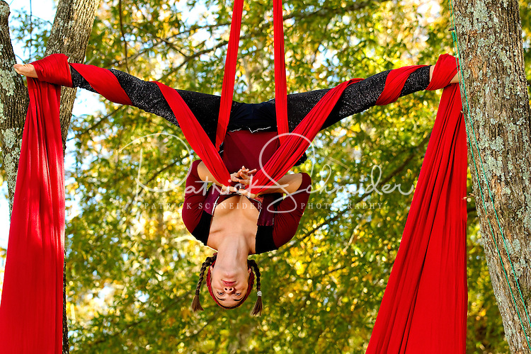 A costumed actor performs aerial acrobatics with scarves at the annual Carolina Renaissance Festival in November 2011. The annual Renaissance Festival and Fair takes place each October and November in Huntersville, NC, near Charlotte, NC.