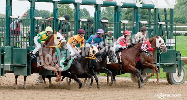 Satch winning at Delaware Park on 9/18/14