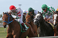 HALLANDALE BEACH, FL - March 31:  First time around in the Honey Fox Stakes G2. Scenes from Florida Derby Day at Gulfstream Park on March 31, 2018 in Hallandale Beach, Florida. (Photo by Liz Lamont/Eclipse Sportswire/Getty Images)