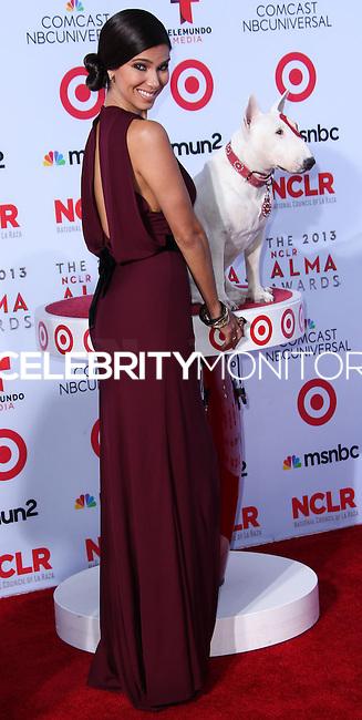 PASADENA, CA - SEPTEMBER 27: Actress/Singer Roselyn Sanchez arrives at the 2013 NCLR ALMA Awards held at Pasadena Civic Auditorium on September 27, 2013 in Pasadena, California. (Photo by Xavier Collin/Celebrity Monitor)