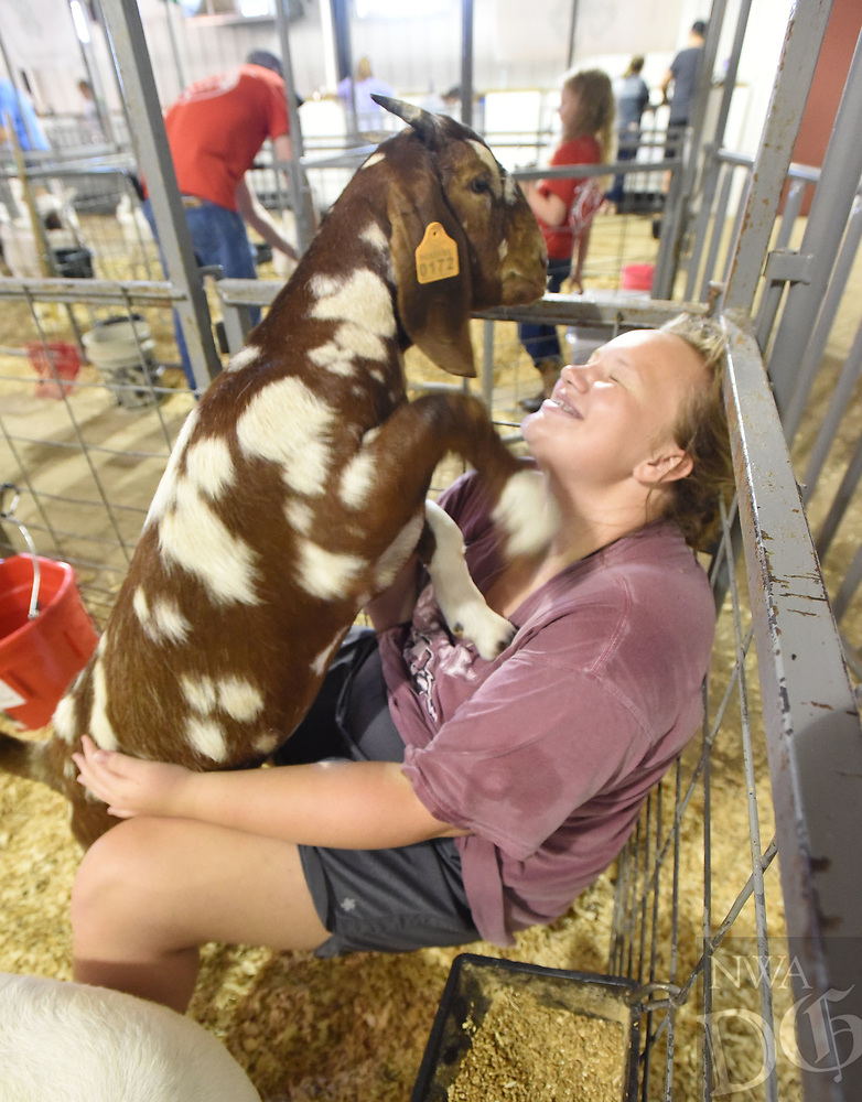 NWA Democrat-Gazette/FLIP PUTTHOFF <br /> GOATS STAR AT FAIR<br /> Kimberly Caswell of Gentry plays Tuesday Aug. 6 2019 with her goats in the livestock barn on opening day of the Benton County Fair. A dairy goat show Tuesday morning opened the festivities at the fairground located near the Vaughn community west of Bentonvlle. The fiar continues today and runs through Saturday. Admission is free.