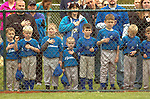 Little Leaguers lined up along fence saying pledge.