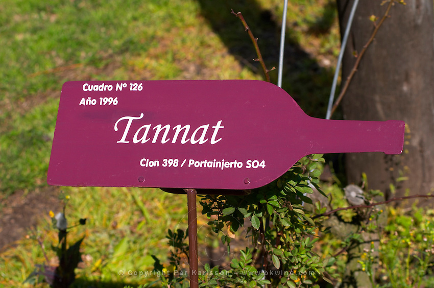 A sign in the vineyard saying that this is Tannat vines with clone 398 and rootstock SO4 Bodega Pisano Winery, Progreso, Uruguay, South America