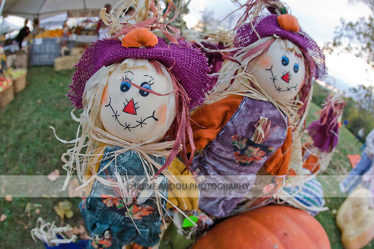Halloween-style scarecrows sit atop pumpkins at the 2008 Shenandoah Valley Hot Air Balloon and Wine Festival at Historic Long Branch in Millwood, Virginia.