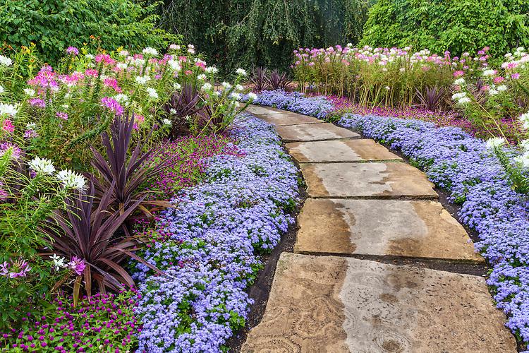 Summer garden color and garden path at Cantigny Park; Robert R. McCormick Foundation; Wheaton, IL