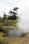 Steam rising from the ground along the crater rim of Kilauea Volcano in Volcanoes National Park, The Big Island of Hawaii, USA, America