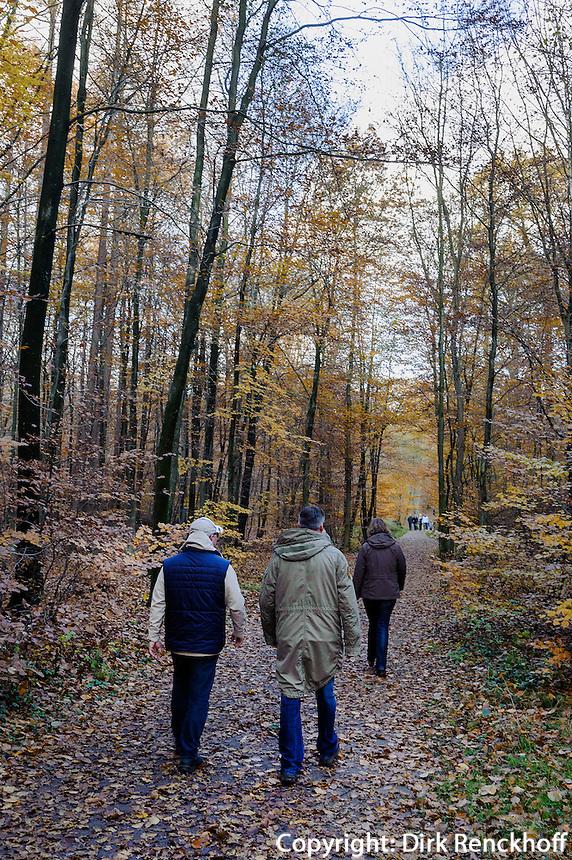 Senatorenweg, Historisch-ökologischer Erlebnispfad Wohldorf-Ohlstedt, Hamburg, Deutschland