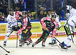06.10.2019, Mercedes Benz Arena, Berlin, GER, 1.DEL, EISBAEREN BERLIN  VS.  Straubingen Tigers, im Bild <br /> Andre Rankel (Eisbaeren Berlin #24), Marcel Noebels (Eisbaeren Berlin #92),<br /> T.J. Mulock (Straubingen Tigers #15), CHASE BALISY (Straubingen Tigers #16)<br /> <br />      <br /> Foto © nordphoto / Engler